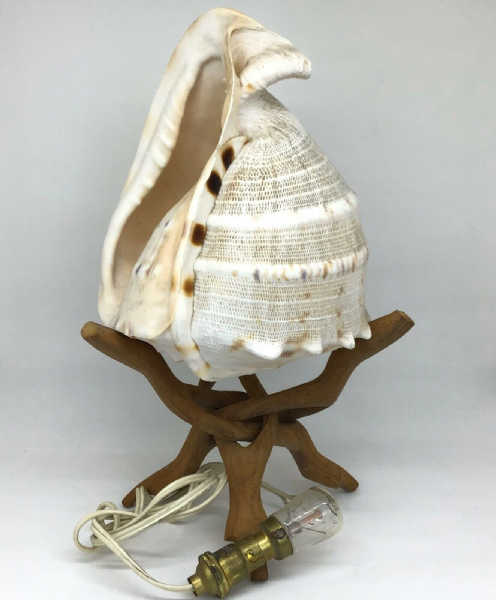 Vintage CONCH SHELL Table Lamp Wooden Tripod Base